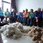 Learning all about Alpaca Fleece