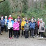 Shimna Walkers with a group from Downe. A well attended event